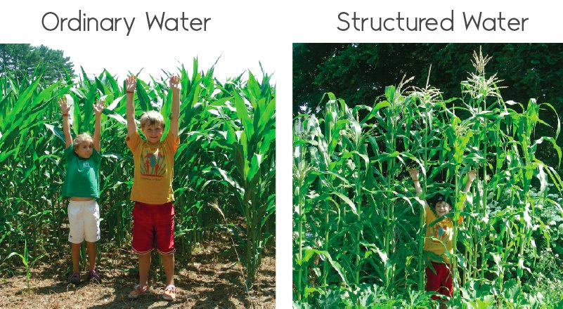 structured water agriculture