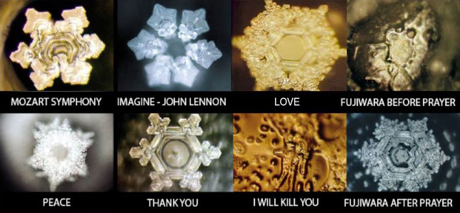 What is Structured Water Dr Masaru Emoto