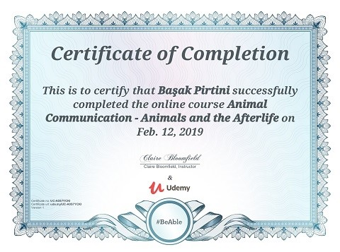 Animal Communication animals afterlife certificate Başak Pirtini
